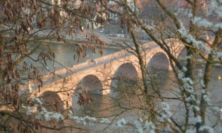 Perché adorerete vivere in Germania – Erasmus a Darmstadt (Assia)