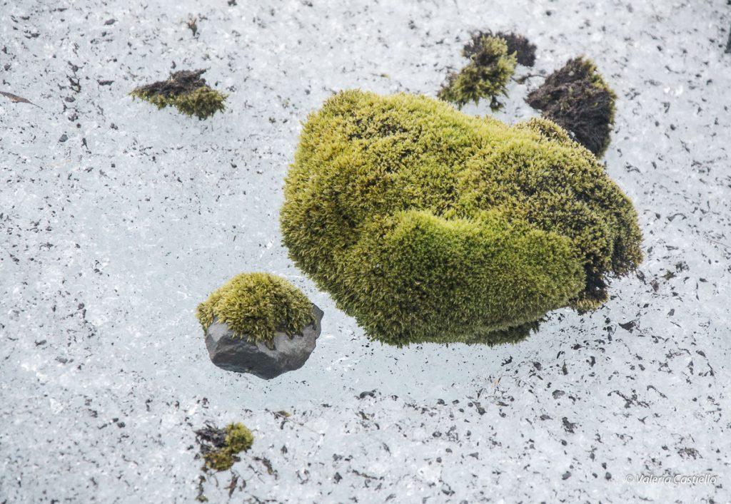 Vatnajokull_Escursione-sul-ghiacciaio_Islanda