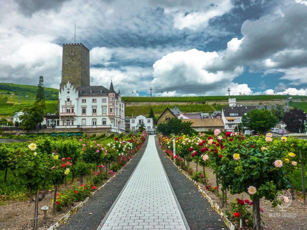 Rudesheim_città da vedere in Germania
