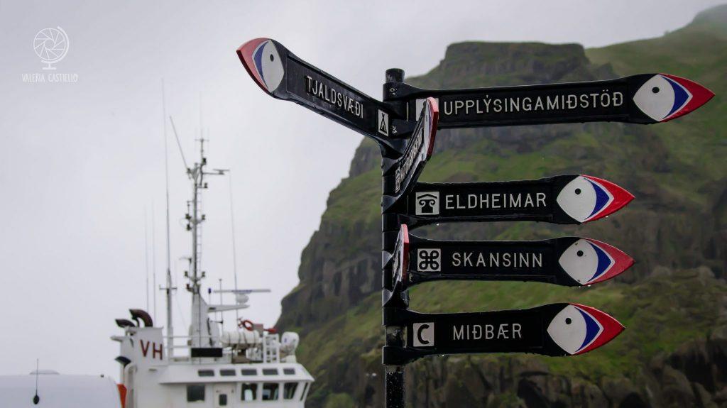 Dove vedere i pulcinella di mare in Islanda? A Vestmannaeyjar si va sul sicuro: ci sono il 30% dei puffin del mondo!