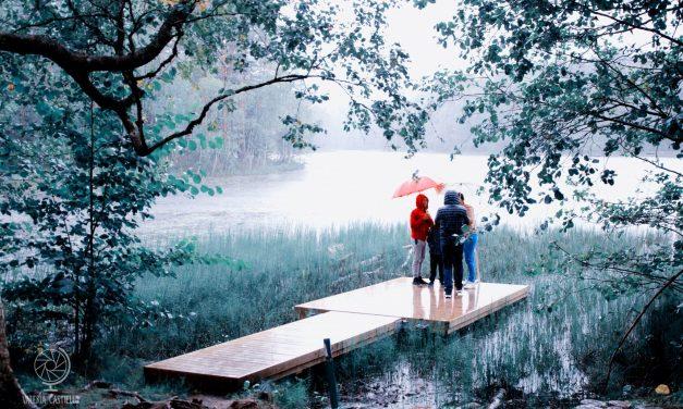 Escursioni da Helsinki: il Parco Nazionale di Nuuksio