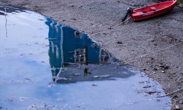 Guida a Flatey, Islanda: l'isola più bella del mondo