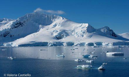 Viaggio in Antartide: guida per la spedizione al Polo Sud