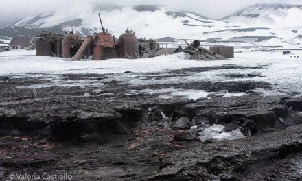 Isole Shetland, Antartide: Deception Island e altre perle australi