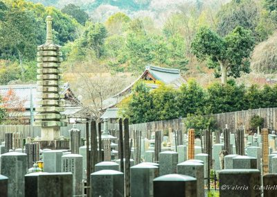 Cimitero buddhista ad Arashiyama, Kyoto