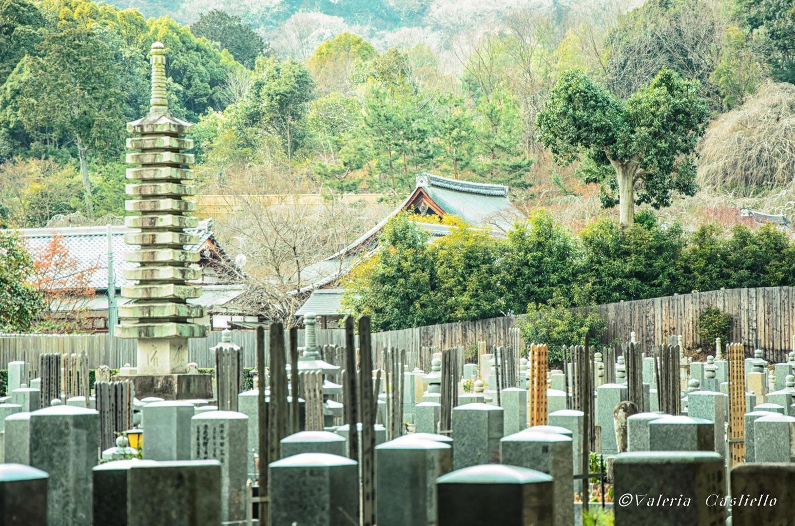 Kyoto, Arashiyama -Giappone low cost