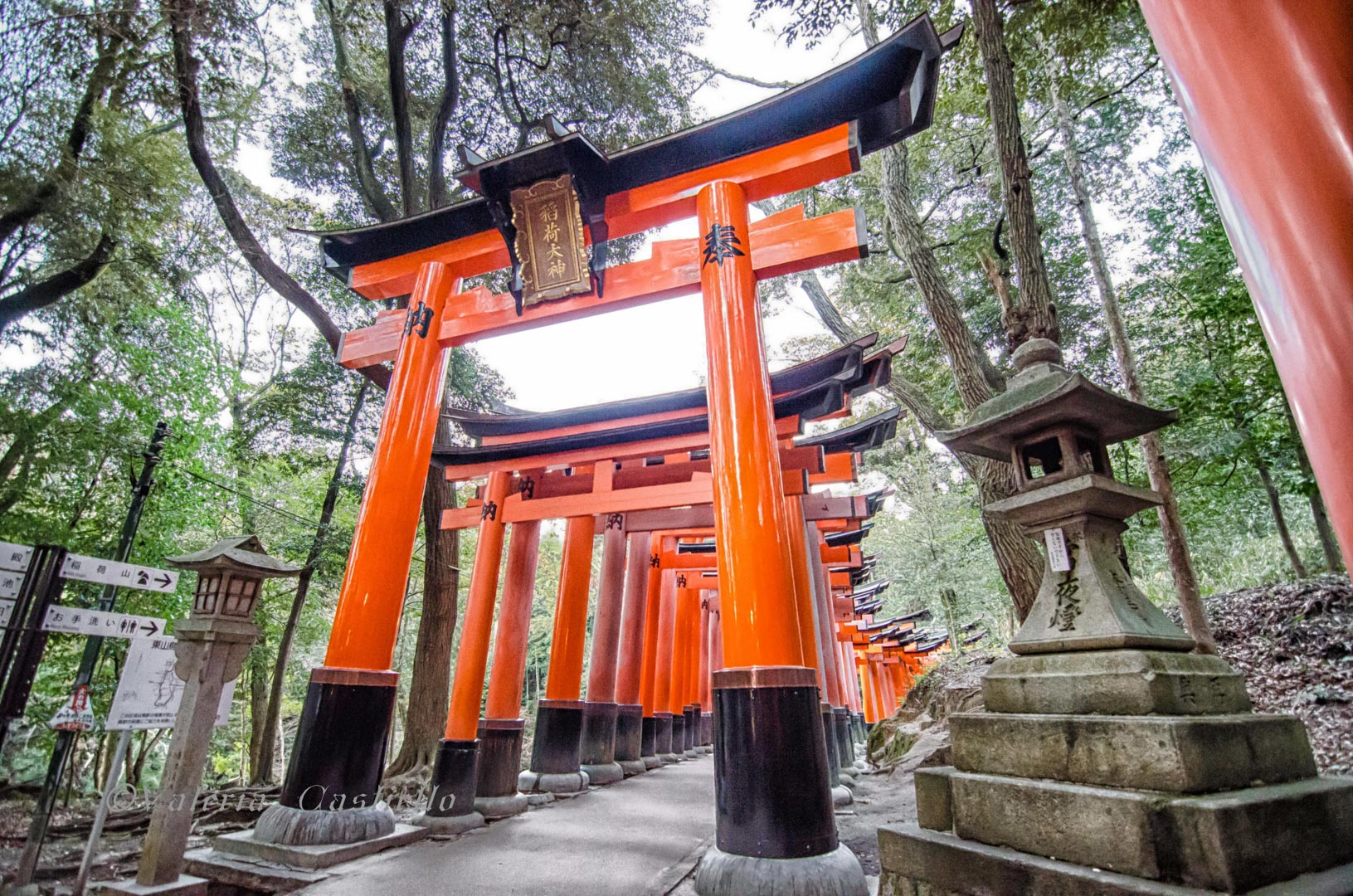 Giappone low cost_Kyoto_Fushimi Inari_wm_mini