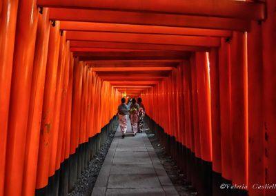 Fushimi Inari al tramonto