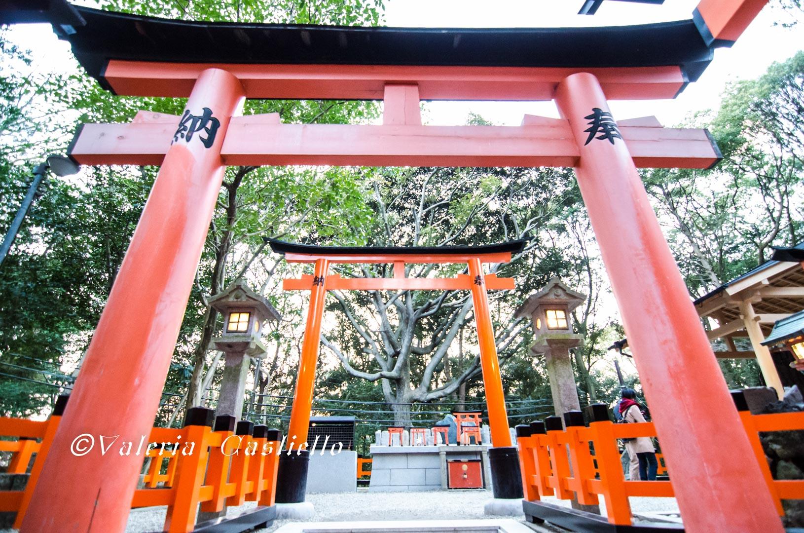 Fushimi-Inari_Kyoto_low_cost_wm-min