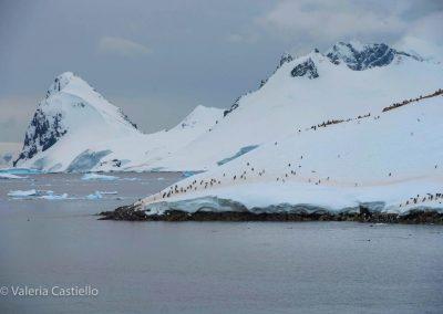 Polar landscape- Antartide