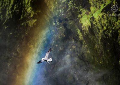 Skogar e l'arcobaleno di Skogafoss