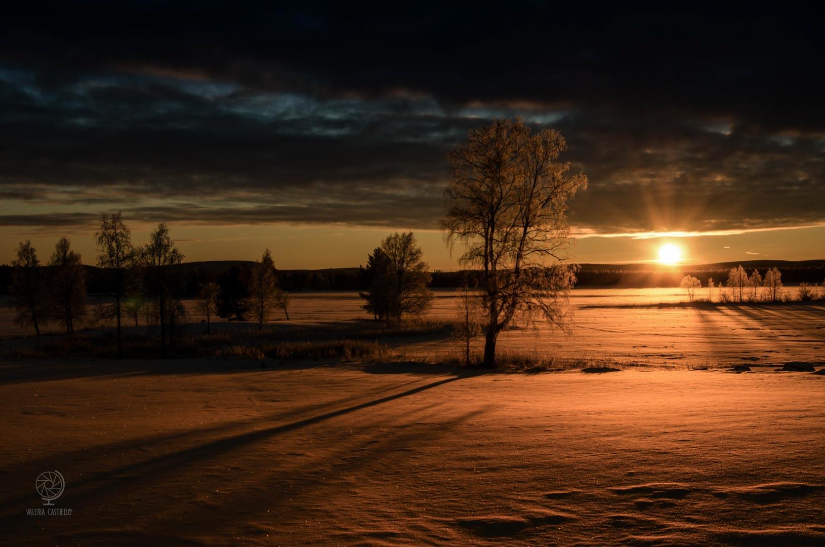 Lapponia Svedese in inverno - Svansele, Skellefteå - Västerbotten