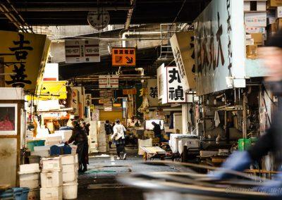 Tsukiji, il mercato del pesce di Tokyo