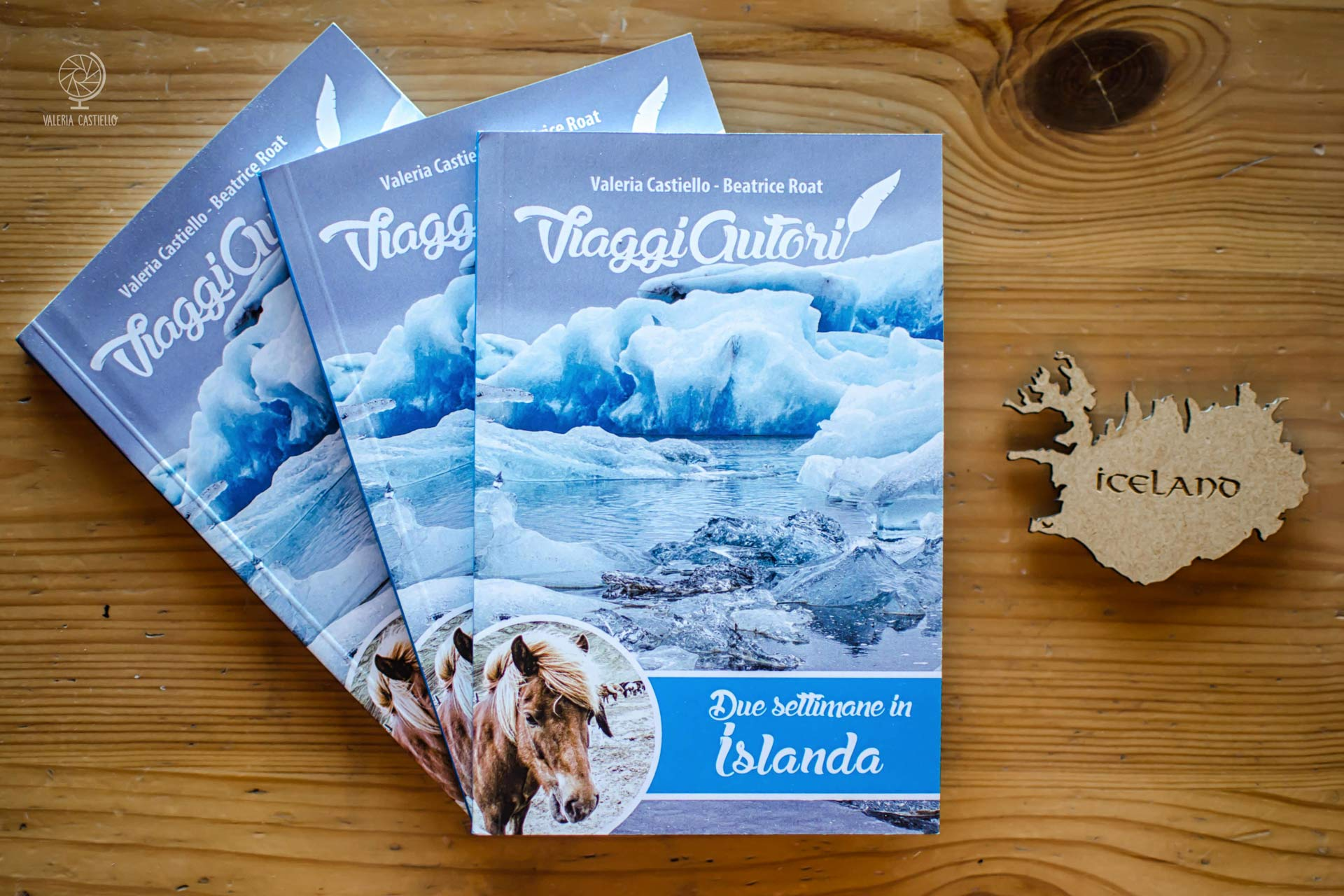Guida Islanda Viaggi Autori