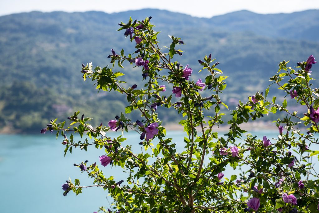 Lago del Turano_Monte Navegna -©Valeria Castiello