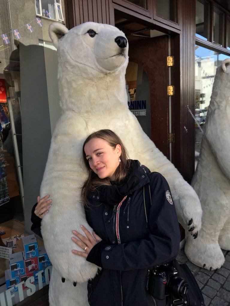 Animali in Islanda_Orso polare