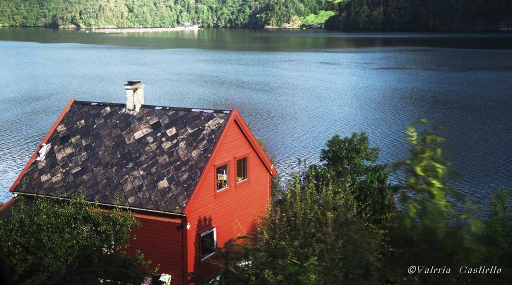 Sognefjord in a Nutshell - La vista dal treno Bergen-Myrdal