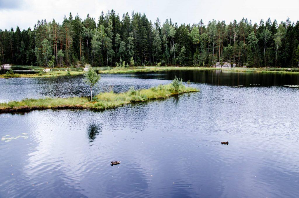 Escursioni da Helsinki: Nuuksio in estate