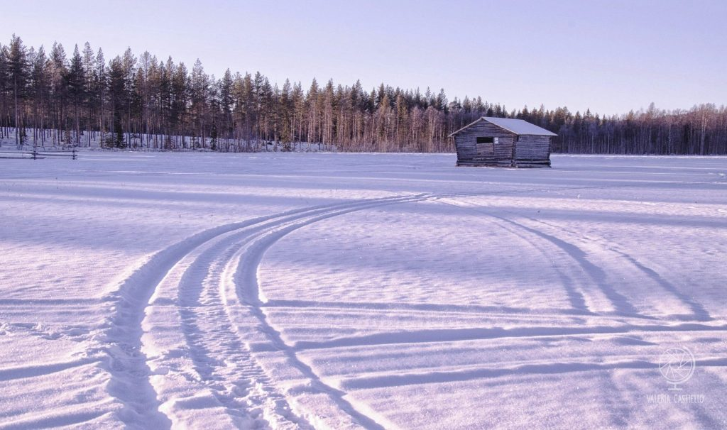 Poesia lappone. Una casetta solitaria, betulle, ed un lago ghiacciato su cui è appena passata una motoslitta.