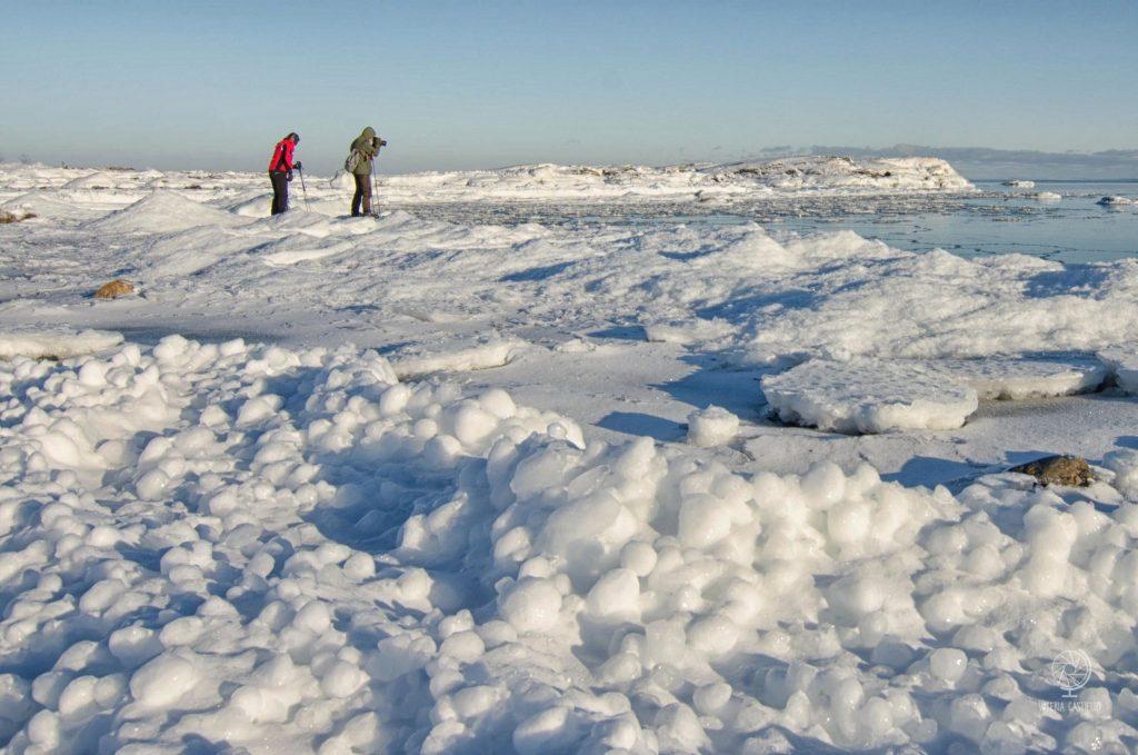 Mare ghiacciato in Svezia: trekking sul Golfo di Botnia