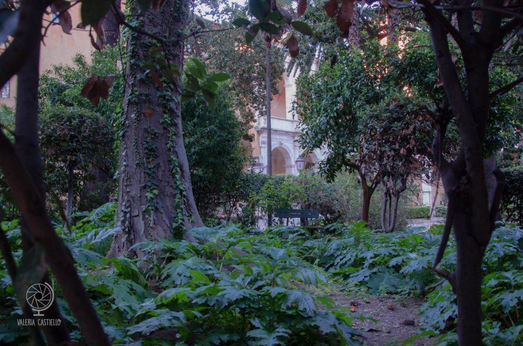 "Giardino di Palazzo Venezia a Roma: la ""mia"" panchina nascosta"