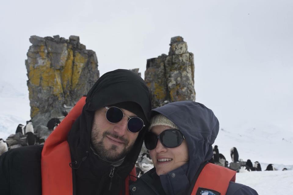 Bardati alle isole Shetland del Sud (Antartide)