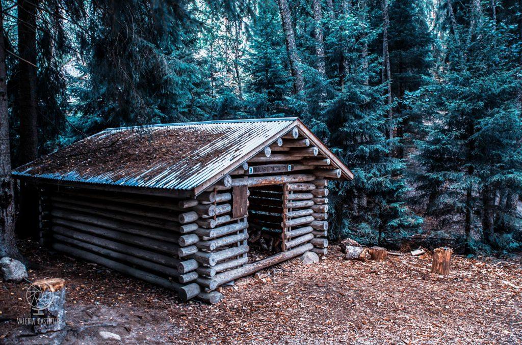 Escursioni da Helsinki: Nuuksio-Mustalampi