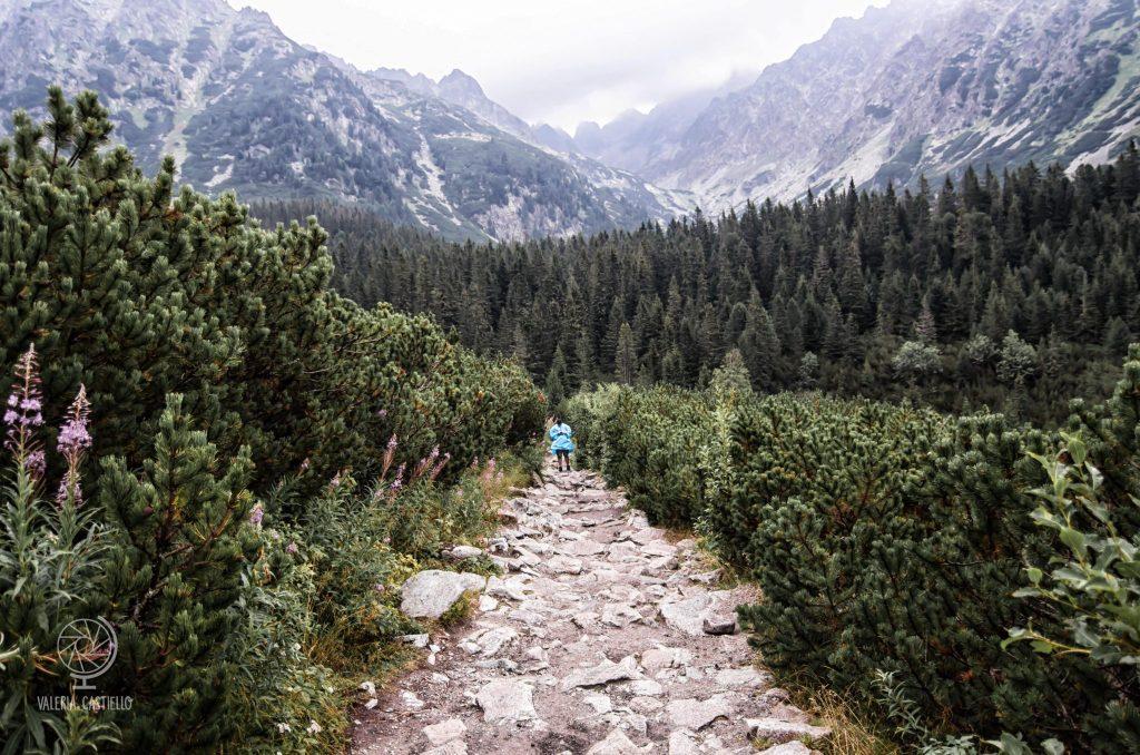 Trekking sugli alti Tatra - 10 curiosità su Bratislava e sulla Slovacchia