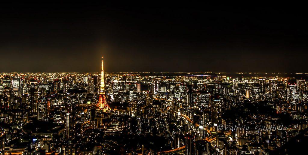 Tokyo dall'alto: vista dalla Mori Tower