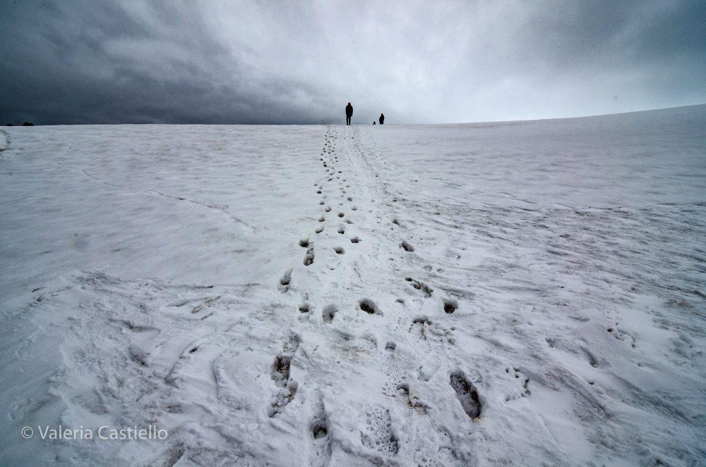 sole_shetland_meridionali_man_on the_half_moon