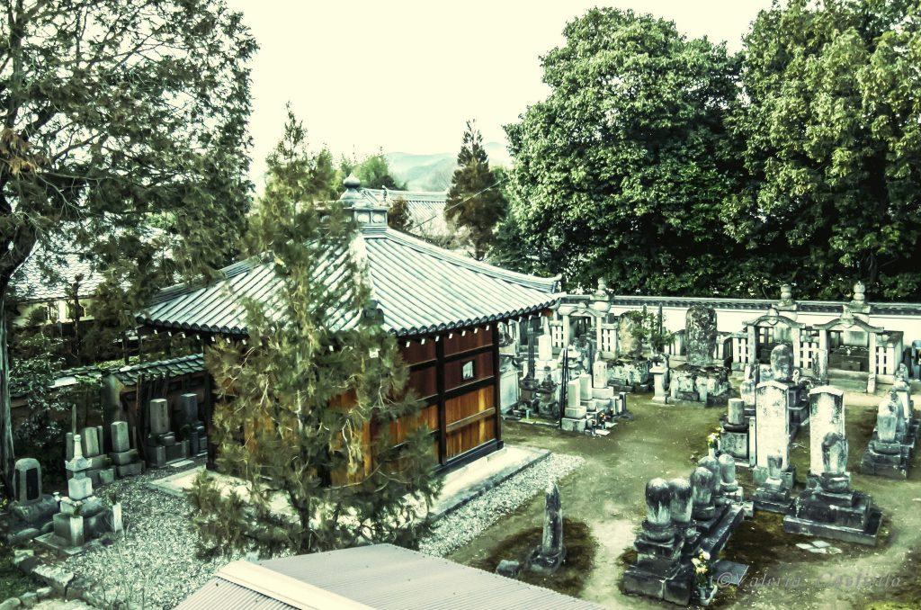 Cimitero buddhista sotto la nostra finestra - Shunkoin, Kyoto