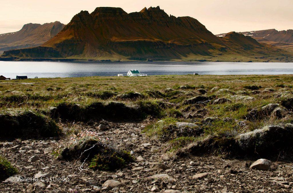 Fiordi Occidentali - Viaggio in Islanda fai da te